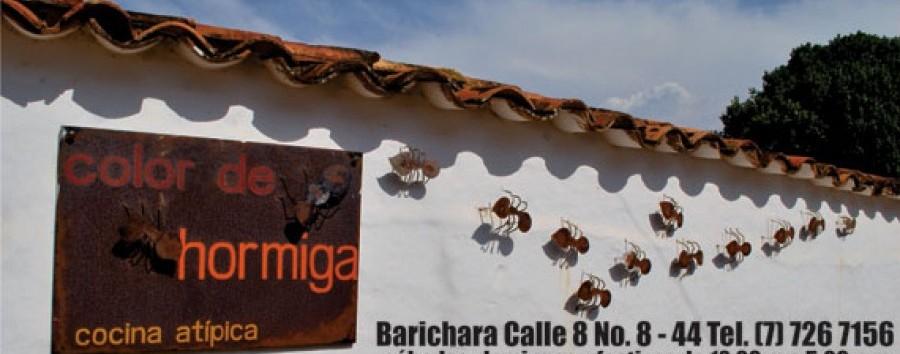 Barichara- Color de Hormiga1